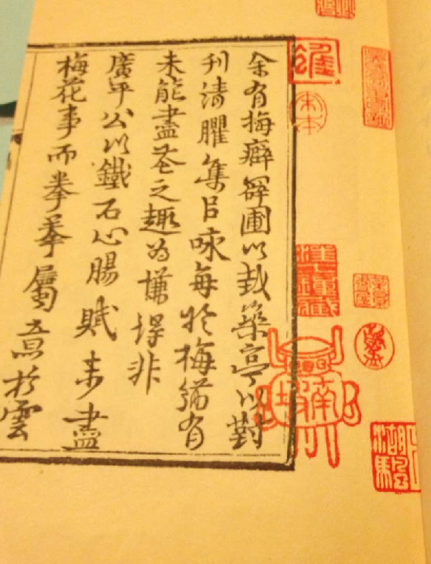 Fig. 11 – Photo of preface of manual of plum blossom likeness