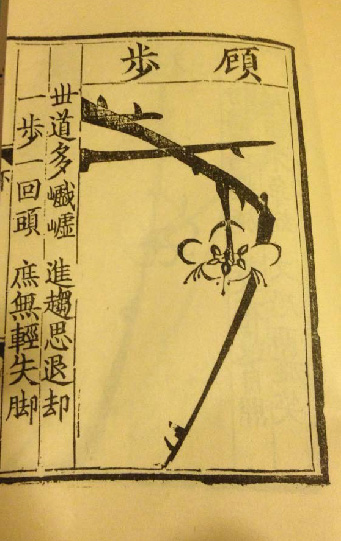 Fig. 14 photo of page from reproduction of Song Boren Manual of plum blossom likeness
